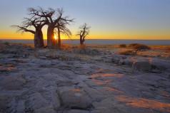 Botswana Day Holiday