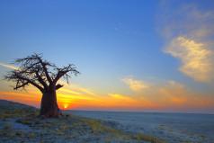 Botswana Day