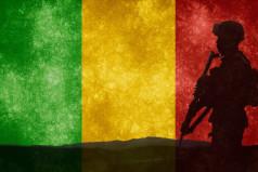 Mali Army Day