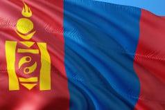 Mongolia Election Day
