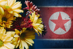 North Korean Mother's Day