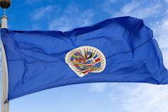 Panamerican Day