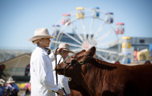 The Royal National Agricultural (RNA) Show Day (Brisbane only) is usually held on the second Wednesday in August except when there are five Wednesdays in August when it is held on the third Wednesday.