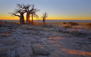Second Day of public holidays to mark Botswana's independence from the United Kingdom in 1966