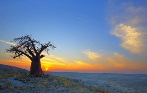 Botswana gained its independence from Great Britain on 30 September 1966