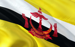 The Royal Brunei Armed Forces was formed on 31 May 1961