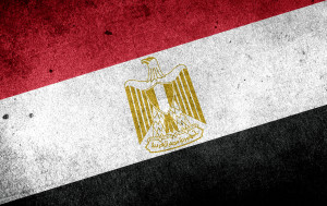 Celebrates the anniversary of Police officers resistance against the British Army in 1952 and the day of the beginning of the Egyptian revolution of 2011