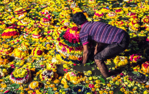 Bathukamma is floral festival celebrated by the Hindu women of Telangana