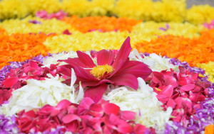 Onam lasts 10 days with official state holidays on three or four days starting from Onam Eve (Uthradom) to the Third Onam Day