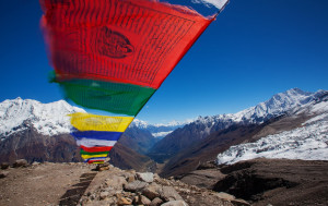 Tibetan New year, also known as Losar, is the most important festival in the Tibetan calendar