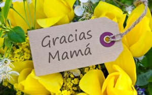Mother's Day in Panama is a national holiday, celebrated on the Feast of the Immaculate Conception