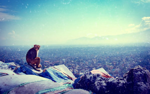 Nepal National Mourning Day