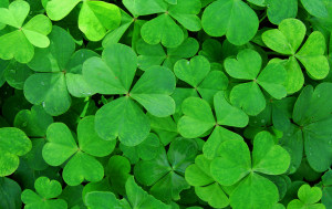 St. Patrick, the patron saint of Ireland, is a widely known historic figure. But for all his celebrity, his life remains somewhat of a mystery.