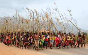 A traditional ceremony where up to 40 000 Swazi maidens gather and dance for the Queen Mother