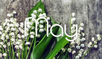 Lily of the Valley is the traditional flower of May.