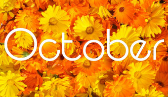Marigold is the traditional flower of October.