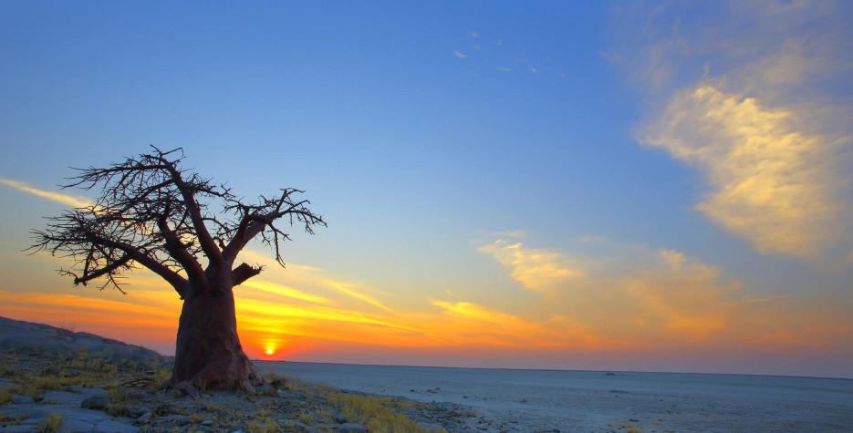 Botswana Day in Botswana in 2020