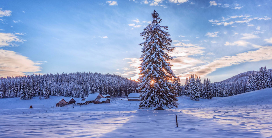 Christmas Day in Slovenia in 2020