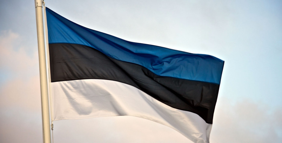 Independence Day in Estonia in 2020