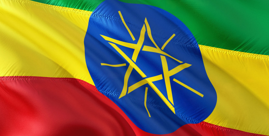 Patriots' Victory Day in Ethiopia in 2020