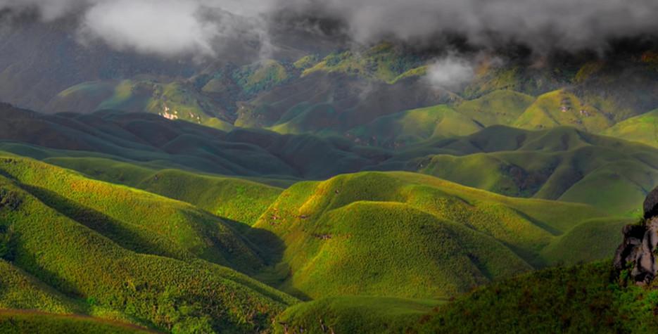 Nagaland 2019