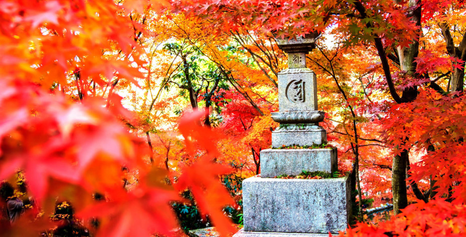 Fall Equinox 2020.Autumnal Equinox Day In Japan In 2020 Office Holidays