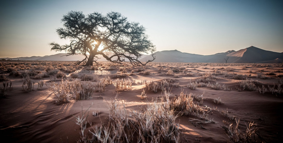 Cassinga Day in Namibia in 2022