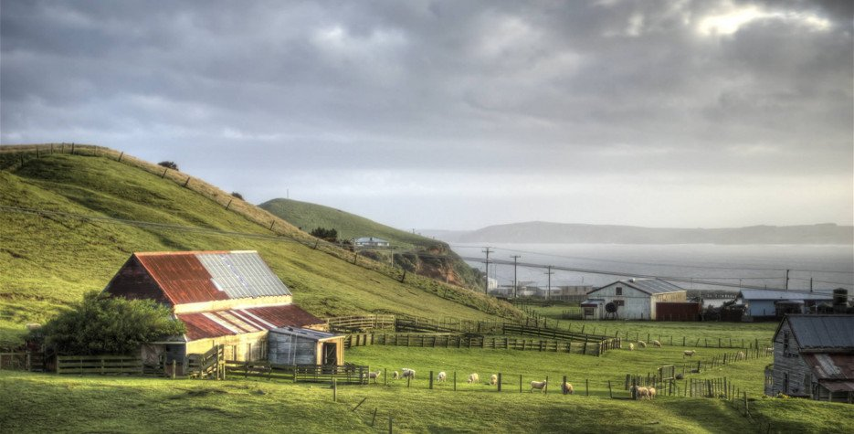 Chatham Islands Anniversary Day in Chatham Islands Territory in 2019