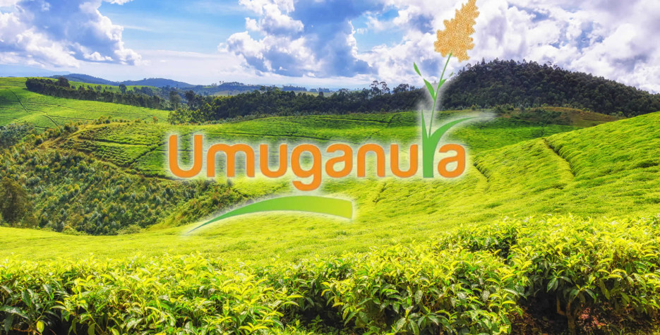 Umuganura Day in Rwanda in 2022