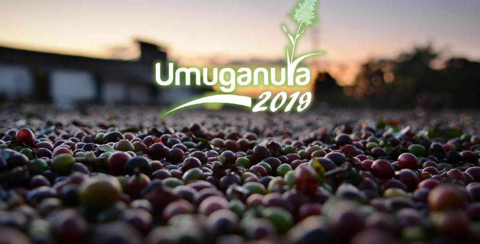 Umuganura Day in Rwanda in 2020