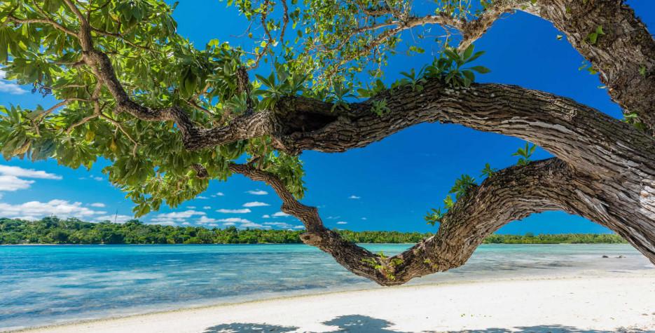 Vanuatu 2021
